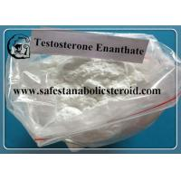 Buy cheap Primoteston CAS 315-37-7 Bulk Steroids Testosterone Enanthate Powder For Asthma from wholesalers