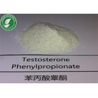 Wholesale Injectable Steroid Hormone Testosterone Phenylpropionate for Muscle Mass from china suppliers