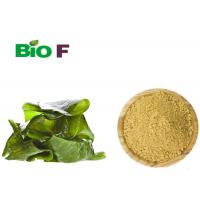 Wholesale Functional Dietary Natural Food Flavourings Dried Seaweed Kelp Powder from china suppliers