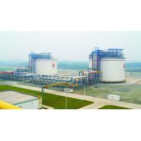 Buy cheap 30000m3 Single Containment LNG Storage Tank 06Cr19Ni10 Q345R Material from wholesalers