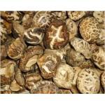 China natural organic mushroom truffle fungus farm foods for sale