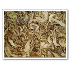 China Porcini,Porcini mushroom,Boletus Edulis,mushrooms on sale