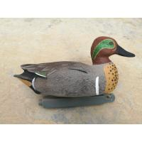 Buy cheap Pro series Green Winged Teal Duck Decoy Floatie for hunting from China duck decoy factory 12pk from wholesalers