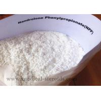 Wholesale Nandrolone Phenypropionate Growth Hormone Steroid from china suppliers