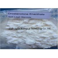 Wholesale Bodybuilding Raw Steroid Powders Drostanolone enanthate CAS 472-61-145 from china suppliers