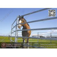 Wholesale 1.8X2.1m Oval Pipe Welding Steel Horse Panels   HESLY China Horse Panel Supplier from china suppliers