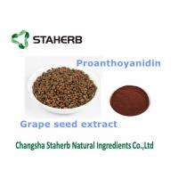 Wholesale Grape seed extract Antioxidant Dietary Supplement proanthocyanidin 25% for food additives from china suppliers