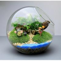 Wholesale Micro landscape Moss iron frame hanging bottle Transparent hanging glass vase Succulents glass  ball Wholesale custom from china suppliers