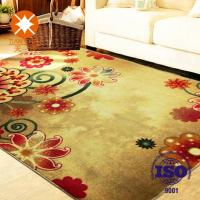Quality Colorful Polyester Waterproof Beautiful Home Rug 50 * 80mm / 60 * 90mm / 120 * 150mm for sale