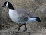 Wholesale HUNTING DECOYS from china suppliers