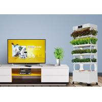 Wholesale Smart Indoor Hydroponic System For Planter Fashion Versatile Energy Saving from china suppliers