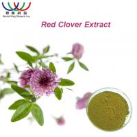 Wholesale 100% Natural Red Clover Extract Isoflavone 8% 20% 40% HACCP HALAL KOSHER from china suppliers
