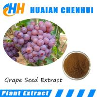 Wholesale Pure Natural Organic Grape Seed Extract Powder/ atural Antioxidant proanthocyanidin powder from china suppliers