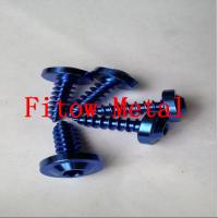 Wholesale Colorful Bike Grade 5 Torx socket Titanium Self Tapping screws ST4X12mm from china suppliers
