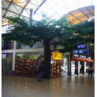 Wholesale hx plastic  banyan tree, artificial ficus tree from china suppliers