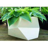 Wholesale Irregular Multilateral Metal Stainless Steel Planter For Home / Hotel / Garden from china suppliers