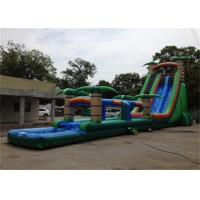 Wholesale Attractive Big Commercial Inflatable Backyard Water Slide For Adult from china suppliers