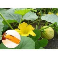 Wholesale Pumpkin Seed Oil Prevent Prostate Natural Dietary Supplements Food Grade from china suppliers