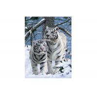 Wholesale Vivid Tiger Image 3d Lenticular Image For Home 0.76mm Thickness 3d Animal Pictures from china suppliers