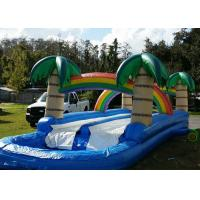 Wholesale Tropical 34ft Long Inflatable Water Slides Rentals With Large Pool from china suppliers