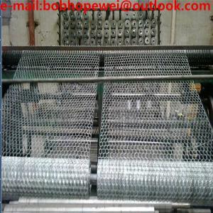 China chicken wire/ hexagonal wire mesh/hexagonal wire netting/chicken wire fence/poultry wire fencing/ steel wire mesh on sale