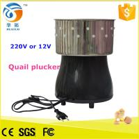 Quality Mini chicken plucker / quail plucker / duck plucking machine for sale