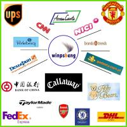 ShenZhen Winpsheng Company Limited
