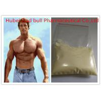 Wholesale 10161-33-8 Strongest Tren Anabolic Steroid , Light Yellow Raw Steroid Powder from china suppliers