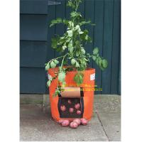 Wholesale Pp Fabric Promotion Grow Bag 2-15 Gallon Garden Plant Accessories from china suppliers