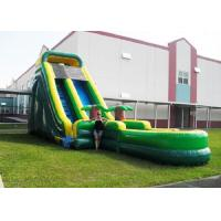 Wholesale Screamer Garden Water Slides Tropical Theme Kidwise Backyard Water Slide from china suppliers