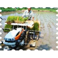 Wholesale Walking Type Rice Transplanter from china suppliers