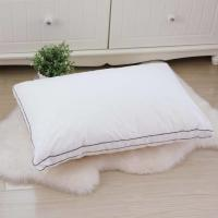 China Hotel Pillow 80% Velvet Down And Color Piping Edge With 48*74cm on sale