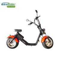 Quality EcoRider Fat Tire 2 Wheel Electric Bicycle , On Off Road Eletric Scooter With Remote for sale