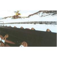 Quality Cold resistant conveyor belt for sale