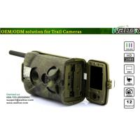 Wholesale Live Video Wireless Ltl Acorn Scouting Camera , Outdoor Scouting Camera for Deer Hunting from china suppliers