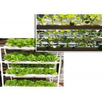 Wholesale Double Side Tube Soilless Cultivation , NFT Hydroponic Pipes For Fruit Vegetables from china suppliers