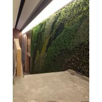 Wholesale Artificial green wall plants from china suppliers