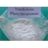 Buy cheap Injectable Steroid Powder Nandrolone Phenylpropionate CAS 62-90-8 from wholesalers