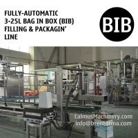 China Fully-automatic 3-25L Bag in Box Water Wine Rum Alcohol Beverage Oil BIB Filling Machine and Packaging Line on sale