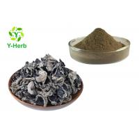 China 100% Vegetable Extract Powder Ground Auricula Dehydrated Dried Black Fungus Powder for sale