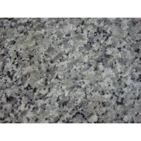 Buy cheap Arabescato Granite from wholesalers
