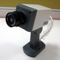 Quality security wireless ip cameras with a motion detector sensor / activation light for sale