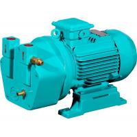 China SK-0.5 1.5kw single stage cast iron material liquid ring vacuum pump for sale