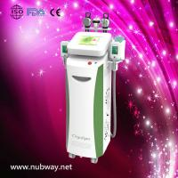 Buy cheap Newly-designed!!! The most featured Cryolipolysis Slimming Apparatus Green Vertical from wholesalers