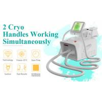 China Professional portable fat freeze body slimming cryolipolysis lose weight machine for salon for sale