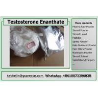 Wholesale Steroid Testosterone Enanthate / Test E Homebrew For Bodybuilding Steroid Cycle CAS 315-37-7 from china suppliers