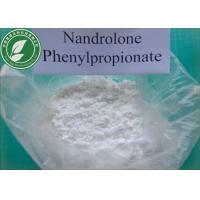 Wholesale Muscle Growth Steroid Powder Nandrolone Phenylpropionate CAS 62-90-8 from china suppliers
