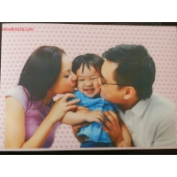 Buy cheap 3D Lenticular Printing dot pattern fly--eye 3d circulate Stereoscopic Software from wholesalers