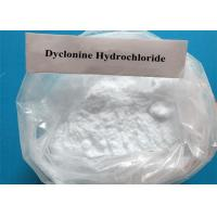 Quality Local Anesthetic Powder Neurosteroid Prehormone Androsterone Dyclonine Hydrochloride Procainamide HCl CAS 536-43-6 for sale