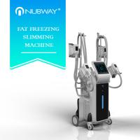 Buy cheap CE approval new arrival professional powerful 4 Cryo heads fat freezing slimming machine from wholesalers